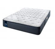 Sealy Special Edition  Mattress Firm